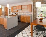 De Noordamerikaanse Keuken van de Flat van het Project Moderne