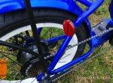 """"""" bici elettrica della gomma grassa pieghevole della bici dell'affissione a cristalli liquidi della batteria di litio 350W 20"""