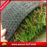 人工的な泥炭のように自然美化のための草に値を付け、遊ぶ