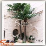 Palmeira artificial plástica decorativa ao ar livre do coco do estilo novo