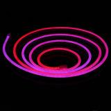 꿈 색깔 디지털/LED 건물을%s 네온 코드 빛을 쫓기