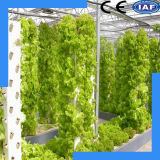 Système hydroponique agricole élevé de rendement et de coût bas