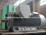 Motor de CA asíncrono trifásico de la inducción de la jaula de ardilla de la talla grande del precio de fábrica