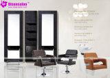 Silla popular del salón del peluquero del champú de los muebles del salón de la alta calidad (P2040C)