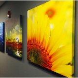 Tela di canapa fissata al muro del fiore della stampa astratta di arte per la decorazione