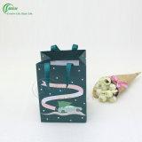 Constructeur promotionnel coloré de sac de cadeau (KG-PB077)