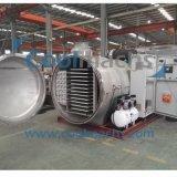 フルーツ/凍結乾燥機の価格のための大規模な真空の凍結乾燥器