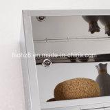 [ستينلسّ ستيل] أثاث لازم مستطيل [بثرووم كبينت] تخزين مرآة خزانة 7024