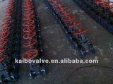 Valvola a saracinesca flangiata (acciaio di getto o acciaio inossidabile)