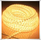 Lumière de chaîne de caractères de SMD5050 DEL dans la décoration d'éclairage de DEL