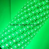 tira impermeable de los 60LEDs/M DC12V Lamber 5050 flexibles impermeables LED