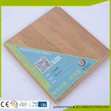 Pavimentazione del PVC di certificazione di RoHS e del Ce utilizzata in costruzione