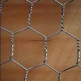 Het hexagonale Gelaste Netwerk van de Draad
