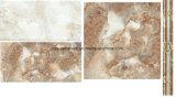 De decoratie betegelt de Veelvoudige Tegel van de Muur van het Ontwerp Ceramische