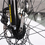 Bicicleta elétrica de dobramento da montanha da suspensão