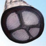 Cable de cobre eléctrico de la base 25mm2 del cable 4 de la corriente del PVC/del PVC del Cu 600/1000V del IEC 60502-1