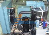 Máquina de gelo do floco da qualidade superior (GM-20K, GM-25K, GM-30K)