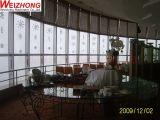 Sistema de mecanismo impulsor rotatorio del Pin-Engranaje del restaurante en los altos edificios