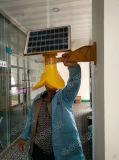 8W統合された太陽壁ライト、ホーム使用のための庭ライト