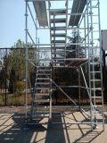 Фабрика ISO 13 лет леса Ringlock изготовления и консигнанта