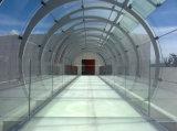 4mm/6mm/8mm/10mm/12mm/15mm/19mm/Safety e vidro temperado curvado