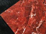 Azulejo de suelo de cerámica por completo esmaltado rojo de la porcelana del color (800*800&600*600)