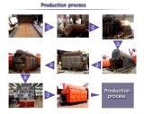 Madera y caldera de vapor encendida carbón del conjunto para la fábrica de papel