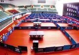 O PVC ostenta o assoalho para a venda quente do tênis de tabela 2017 (JYST0050)