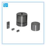 moulage carré appuyant de 20X20mm pour la presse hydraulique automatique électrique