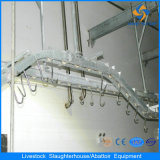 Cattle Cow Beef Abattoir Plant를 위한 동시 Sanitary Inspection Device