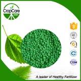 Düngemittel 16-16-16=Te des Import-NPK für Pflanze