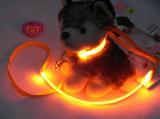 Laisse promotionnel flash LED Laisse LED clignotant collier de 1,5 cm Laisse