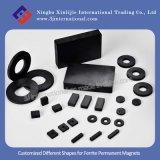Different personalizzato Shapes per Ferrite Permanent Magnets