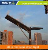 20W allen in Één ZonneStraatlantaarn met de Sensor van de Motie/Geïntegreerd ZonneLicht voor Openlucht