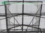 Intelligente Multi-Überspannung Wasserkulturglasgewächshaus
