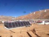 generatore di vento orizzontale di asse di 3kw 96/120/220V (SHJ-WH3000)
