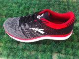 Les chaussures neuves de sport de type de chaussures de vente en gros pilotent des chaussures de Knit