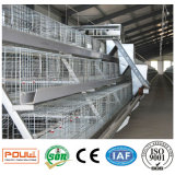 De Apparatuur van de Kooi van het Landbouwbedrijf van de Kip van de Batterij van de Hoge Capaciteit van de Apparatuur van het gevogelte