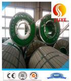 Qualità del lamierino/lamiera dell'acciaio inossidabile di AISI 304 buona e prezzo di Compective