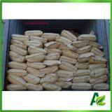 Numéro additif de la poudre CAS de benzoate de sodium de catégorie comestible : 532-32-1