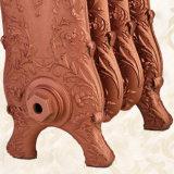 Teste padrão popular do radiador do aquecimento do ferro de molde da água quente