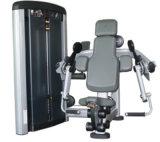 Máquina del enrollamiento del bíceps del equipo de la salud (XH907)