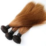 Ombreの毛2の音色のインドのRemyの人間の毛髪