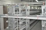 De Kooi van het Landbouwbedrijf van de Kip van de Laag van de Batterij van de Hoge Capaciteit H van de Apparatuur van het gevogelte
