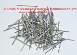 Fusione Extract Steel Needle Shape#330, #310, #304, #446, #430 0.5mmx25mm per Industry Kiln
