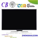 "32 "" e-GELEIDE Digitale TV LEIDENE TV/32 van TV/32 """