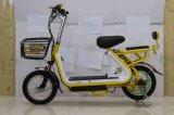 motociclo elettrico del motore posteriore senza spazzola 350W
