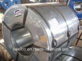 Steel galvanizzato Coil/Gi per Roofing Sheet e Color Base Materials