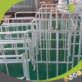 Berufsherstellungs-Qualitäts-Stahlröhrenstahl-Schwein-Schwangerschaft-Stall