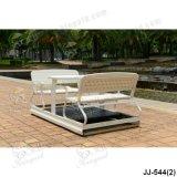Presidenza dell'oscillazione, mobilia esterna, mobilia del giardino (JJ-544)